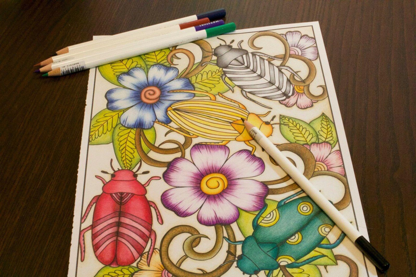 Pencil Woodlands Set Individual Colors