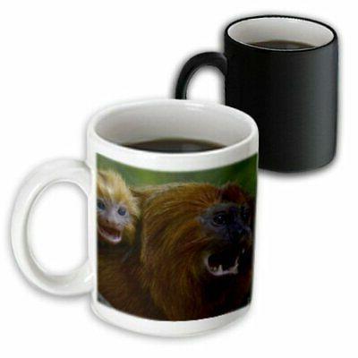 3dRose Golden Lion Tamarin, Mug, 11oz